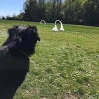 Das Foto wurde bei Smith Cove Park von Jeremy W. am 4/21/2017 aufgenommen