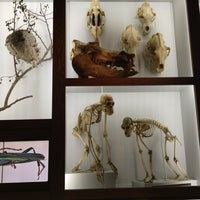 Photo taken at The Academy of Natural Sciences of Drexel University by Laura S. on 12/21/2012