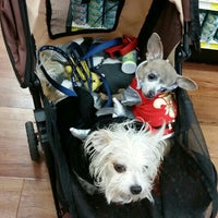 Photo taken at Pet Supermarket by Shelley S. on 10/24/2015