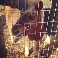 Photo taken at Crumland Farms by Justin on 10/29/2013