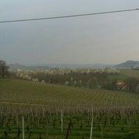 Photo taken at Vigna Villalta by Cascina G. on 4/4/2016
