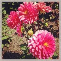 6/9/2013에 Nicholas F.님이 Conservatory Garden에서 찍은 사진
