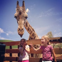Photo taken at San Diego Zoo Safari Park by Lee B. on 8/2/2013