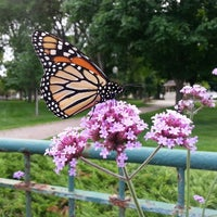 Photo taken at Chaska City Park by Mike T. on 7/18/2014