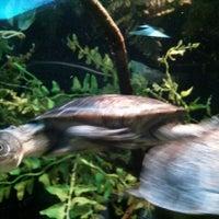 Photo taken at Staten Island Zoo by Brian K. on 4/30/2014