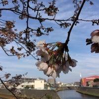 3/29/2014にyuka r.が新川名橋で撮った写真