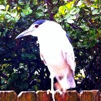 Photo taken at Seaside Seabird Sanctuary by Neil W. on 2/14/2013