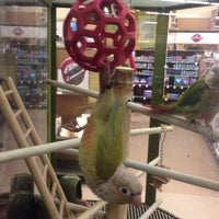 Photo taken at Petco by Steve L. on 1/18/2014