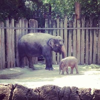 Photo taken at Fort Worth Zoo by Matt M. on 8/10/2013