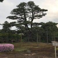 Photo taken at Neagarinomatsu Pine by Masashi H. on 6/18/2017