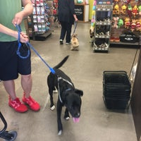 Photo taken at Unleashed by Petco by Lu Y. on 4/29/2017