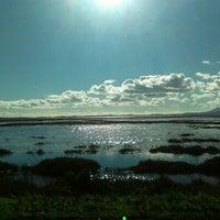 Photo taken at Mare Island Causeway Bridge by Danny G. on 1/10/2013