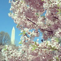 Photo taken at Tidal Basin by Alex C. on 4/13/2013