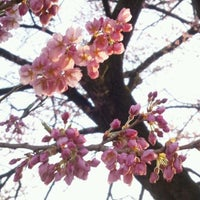 Photo taken at 中安の桜 by limimi on 4/10/2012
