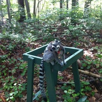 Photo taken at Duke Lemur Center by Nicholas B. on 6/2/2012