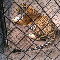 Photo taken at Catty Shack Ranch Wildlife Sanctuary by Kayla H. on 6/1/2012