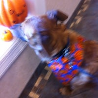Photo taken at Caring Hands Animal Hospital by Deb E. on 10/17/2011