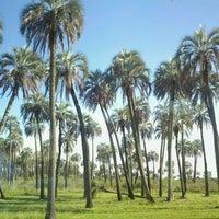 Das Foto wurde bei Parque Nacional El Palmar von Romina M. am 11/27/2011 aufgenommen