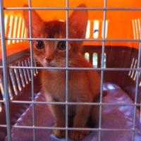 Photo taken at 플러스동물병원 by Joseph F. on 2/12/2012