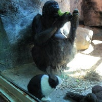 Photo taken at Erie Zoo by Danny H. on 6/20/2012
