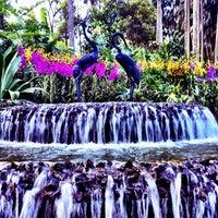 Das Foto wurde bei National Orchid Garden von May F. am 2/12/2012 aufgenommen