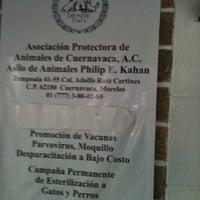 Photo taken at Asilo De Animales Philip E. Kahan by Eloísa T. on 2/18/2012