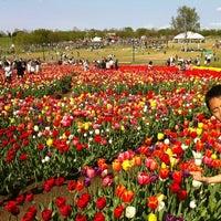 Photo taken at 国営越後丘陵公園 by Jun N. on 5/5/2012