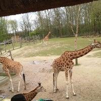 Photo taken at Planckendael by Marina A. on 4/9/2012