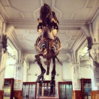 Photo taken at The Manchester Museum by adb on 4/17/2013