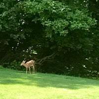 Photo taken at Monocacy Park by Tina B. on 6/29/2017