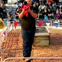 Photo taken at Swifty Swine Racing Pigs by Nessie on 6/4/2017