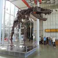 Photo taken at California Academy of Sciences by Santiago V. on 2/25/2013