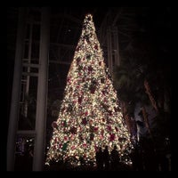 Photo taken at Gaylord Opryland Resort & Convention Center by Annalise N. on 12/22/2012