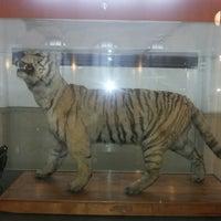 Foto tirada no(a) Museo Nacional de Historia Natural por Simon G. em 5/21/2013