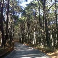 Foto tomada en Bosque Los Colomos II por Carlos G. el 2/7/2013