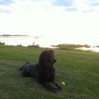 Photo taken at Alexanders Beach Ceduna by Troy H. on 7/31/2013
