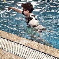 Foto tomada en Sa-by-jai Dog Swimming Pool por ploykwan t. el 7/12/2014