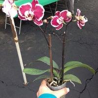 Photo taken at Buena Park Farmers Market by Maribel M. on 12/1/2012