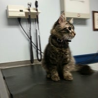 Photo taken at Animal Clinic Of Brandon by Dorian C. on 12/12/2013