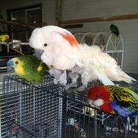 Photo taken at World Parrot Refuge by SOSAUT on 4/14/2013