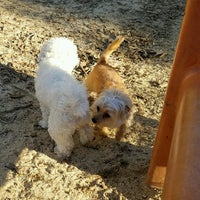 Photo taken at Hermon Dog Park by Camilo C. on 1/29/2017