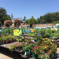 Armstrong Garden Centers Sherman Oaks 12920 Magnolia Blvd