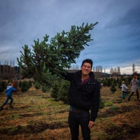 Photo taken at McMurtrey's Red-Wood Christmas Tree Farm by Calvin T. on 12/7/2014