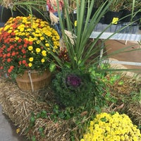Photo taken at Lynde Greenhouse & Nursery by June T. on 10/4/2016