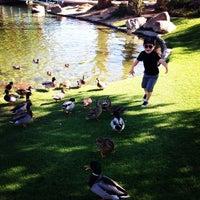 Photo taken at La Quinta Civic Center Park by Jaime G. on 11/20/2014