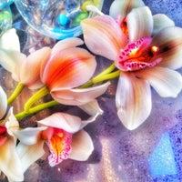 Снимок сделан в Чайка пользователем Люси♊️ 7/22/2015