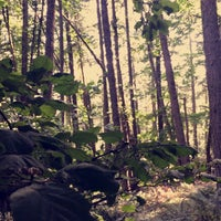 Photo taken at Spencer Butte Park by . on 8/21/2017