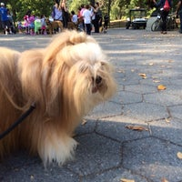 Photo taken at My Dog Loves Central Park Country Fair by Charley L. on 10/8/2013