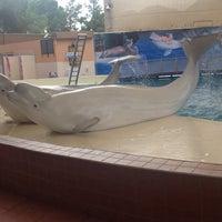 10/17/2013 tarihinde Fatih S.ziyaretçi tarafından Troy Aqua Park'de çekilen fotoğraf