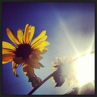 Photo taken at Yankton Trail Park by Cory M. on 9/1/2013